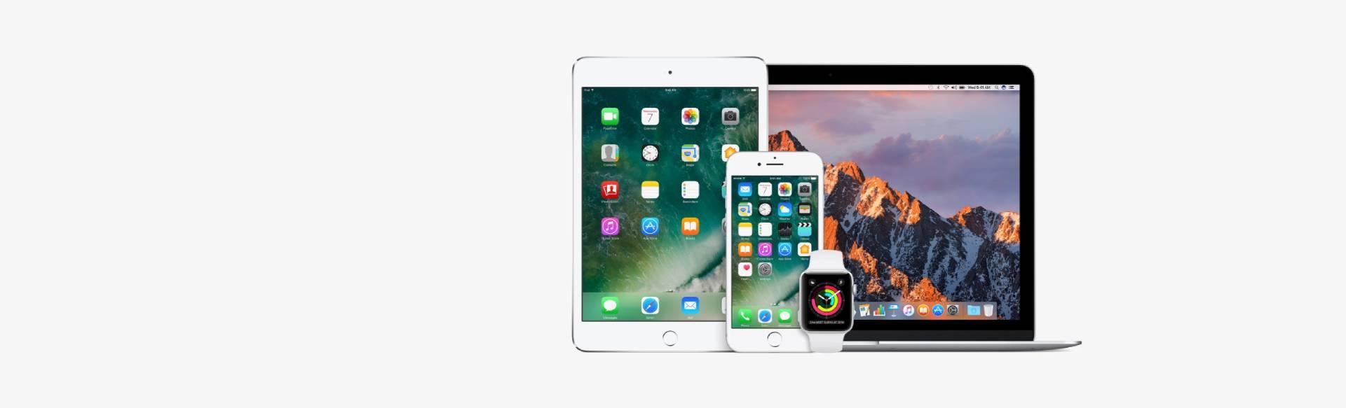 Slide 3 Nl - Apple